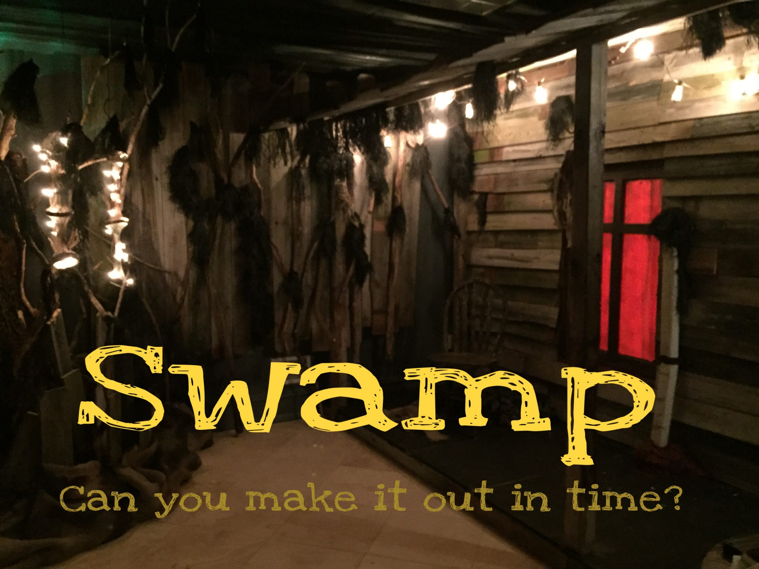 Escape The Puzzle offers a challenging swamp escape room in eastern New Jersey! Book online!